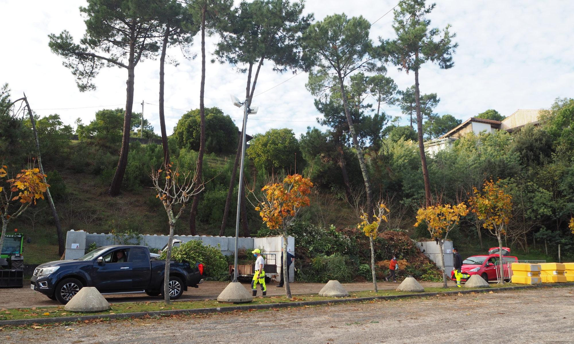Déchèterie temporaire de déchets verts de La Vigne / Lège-Cap Ferret
